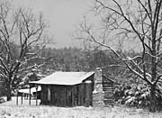 Ray Porter Cabin in the Woods (Black and White)