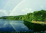 Ray Porter Rainbow canvas prints