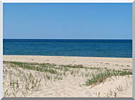 Brandie Newmon Race Point Beach Provincetown Massachusetts stretched canvas art