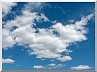 Brandie Newmon Cloudy Summer Day stretched canvas art