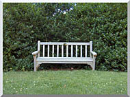 Brandie Newmon Scenic Park Bench stretched canvas art