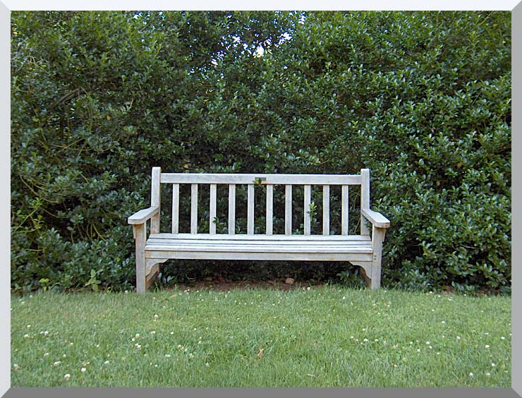 Brandie Newmon Scenic Park Bench stretched canvas art print