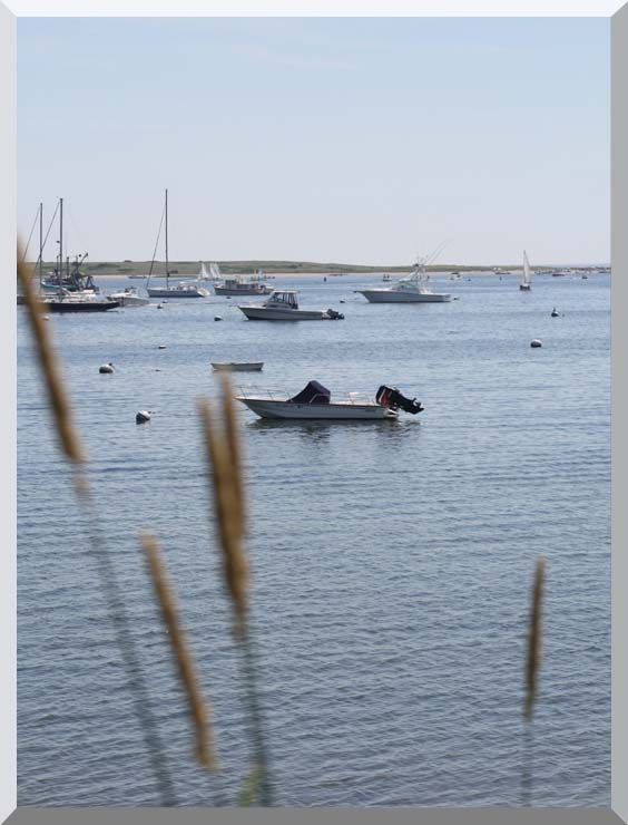 Kim O'Leary Photography Chatham Harbor stretched canvas art print