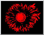 Lora Ashley Black And Red Flower Abstract stretched canvas art