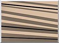 Lora Ashley Contemporary Black And Tan stretched canvas art