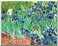 Vincent Van Gogh Irises stretched canvas art