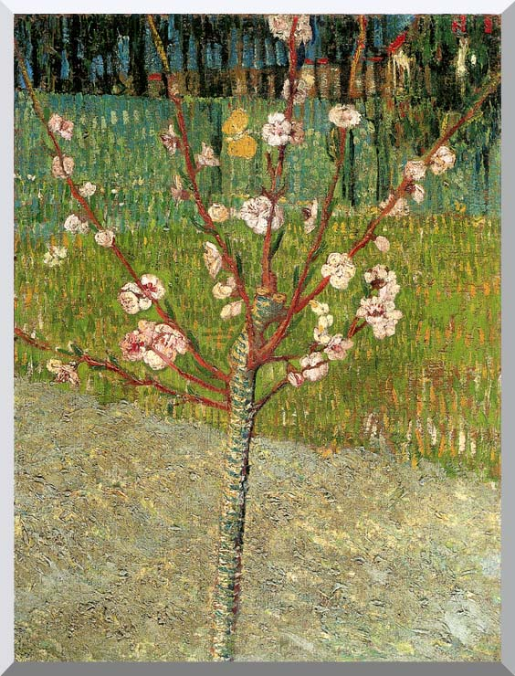 Vincent van Gogh Almond Tree in Blossom stretched canvas art print