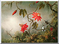 Martin Johnson Heade Passion Flowers And Hummingbirds stretched canvas art