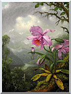 Martin Johnson Heade Hummingbird Perched On The Orchid Plant stretched canvas art