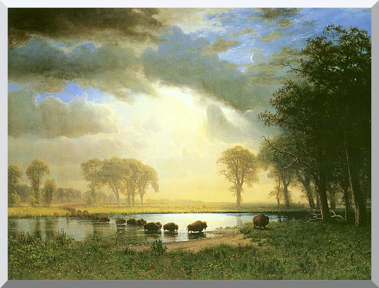 Albert Bierstadt The Buffalo Trail stretched canvas art print