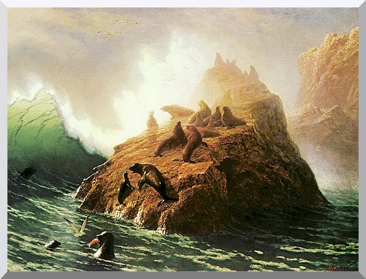 Albert Bierstadt Seal Rock stretched canvas art print
