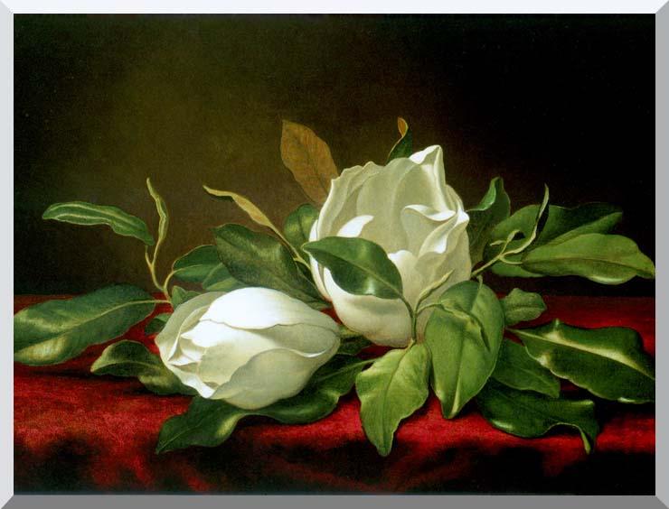 Martin Johnson Heade Giant Magnolias stretched canvas art print