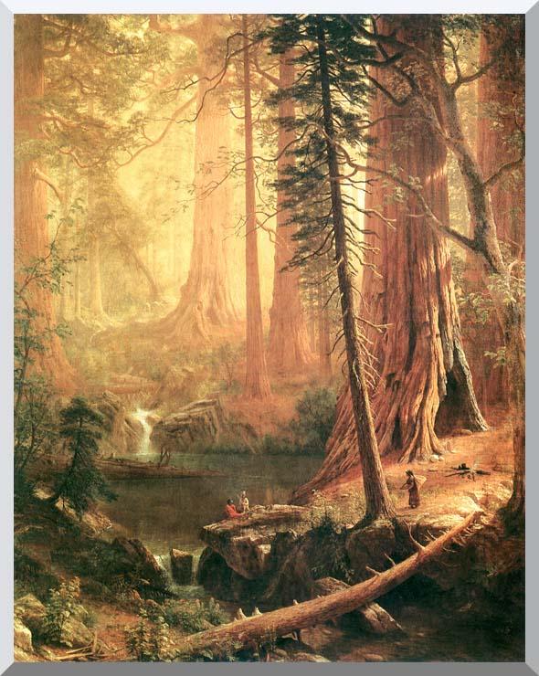 Albert Bierstadt Giant Redwoods of California stretched canvas art print