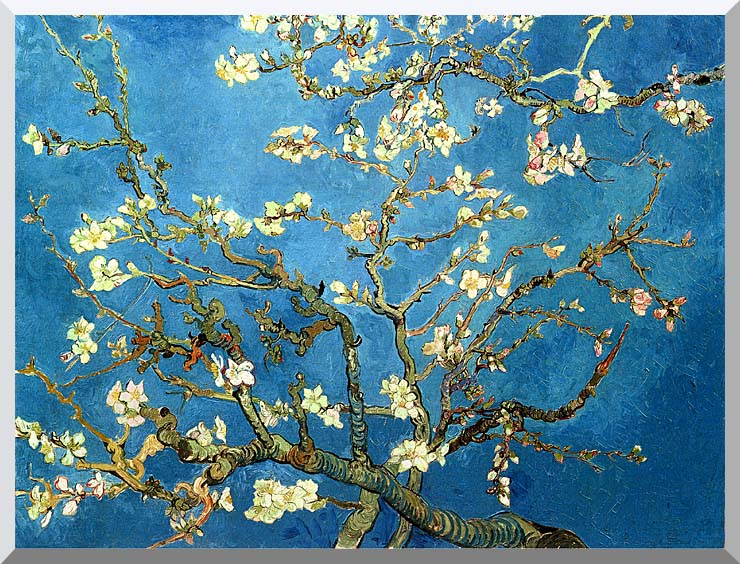 Vincent van Gogh Almond Blossom (detail) stretched canvas art print