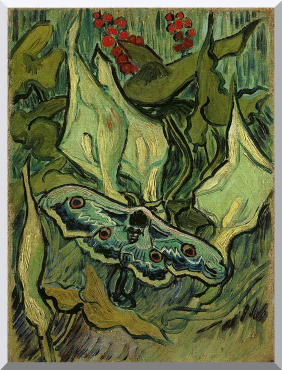 Vincent van Gogh Emperor Moth stretched canvas art print