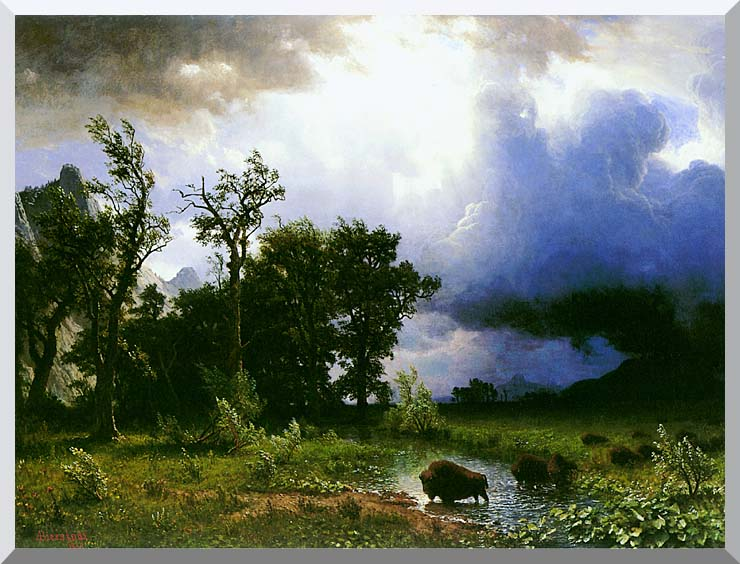 Albert Bierstadt Buffalo Trail: The Impending Storm stretched canvas art print