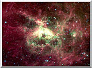 Courtesy Nasa Jpl Caltech 30 Doradus Newborn Stars Of Tarantula Nebula stretched canvas art