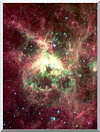 Courtesy Nasa Jpl Caltech 30 Doradus Newborn Stars Of Tarantula Nebula Portrait Detail stretched canvas art