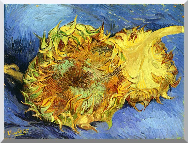 Vincent van Gogh Two Sunflowers stretched canvas art print