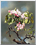 Martin Johnson Heade Branch Of Apple Blossoms Against A Cloudy Sky stretched canvas art