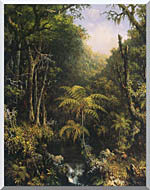 Martin Johnson Heade Brazilian Forest stretched canvas art