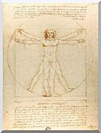 Leonardo Da Vinci Vitruvian Man stretched canvas art