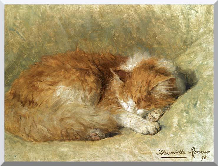 Henriette Ronner Knip A Sleeping Cat stretched canvas art print