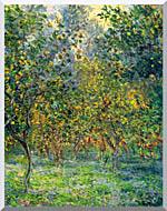 Claude Monet Under The Lemon Trees Bordighera stretched canvas art