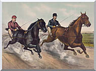 Currier And Ives A Champion Race stretched canvas art