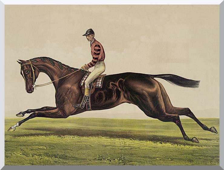 Currier and Ives Iroquois Thoroughbred Horse stretched canvas art print