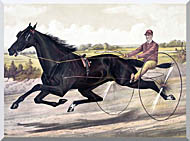 Currier And Ives Jay Eye See Trotter Horse Racing stretched canvas art