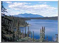 U S Fish And Wildlife Service Blackfish Lake stretched canvas art