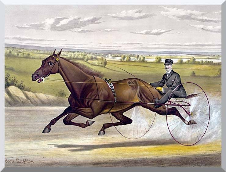 Currier and Ives Maud S Trotter Race Horse stretched canvas art print