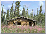 U S Fish And Wildlife Service Canyon Village Log Cabin stretched canvas art