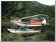 U S Fish And Wildlife Service Float Plane stretched canvas art