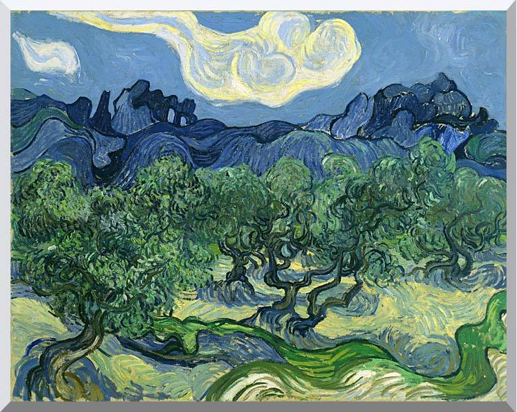 Vincent van Gogh The Olive Trees stretched canvas art print