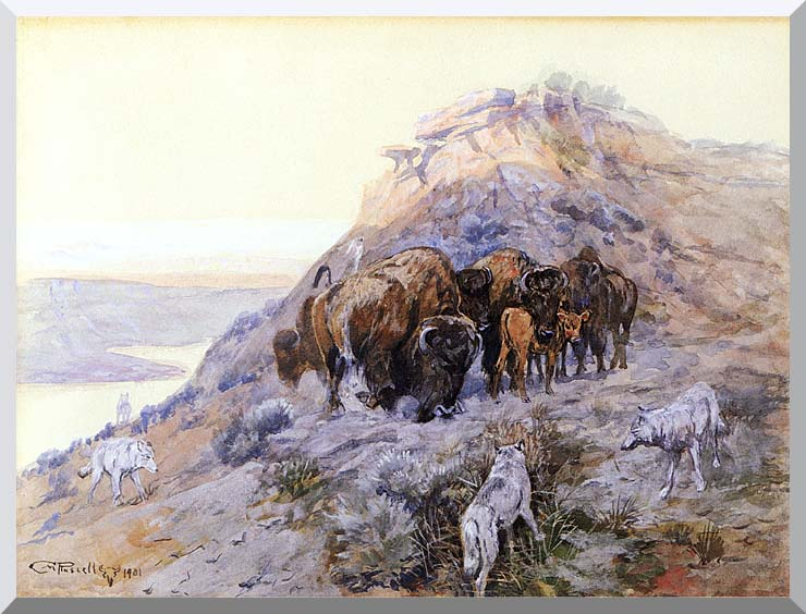 Charles Russell Buffalo Herd at Bay stretched canvas art print