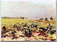 Henri De Toulouse Lautrec Celeyran View Of The Vineyards stretched canvas art