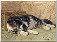 Henriette Ronner Knip Cat Nap stretched canvas art