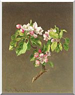 Martin Johnson Heade Apple Blossoms stretched canvas art