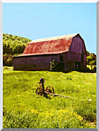 Ray Porter Country Springtime stretched canvas art