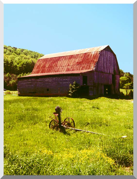Ray Porter Country Springtime stretched canvas art print