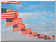 Visions of America American Flags At Washington National Monument stretched canvas art