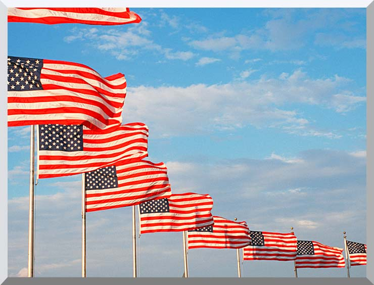 Visions of America American Flags at Washington National Monument stretched canvas art print