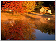 Visions of America Wood Shed On Lake In Autumn Connecticut stretched canvas art