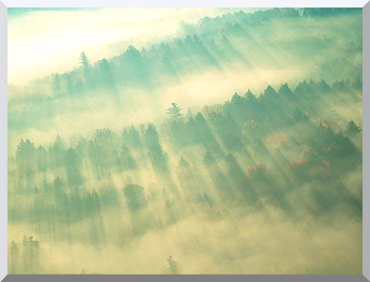 Visions of America Aerial View of Forest on a Misty Morning, Vermont stretched canvas art print