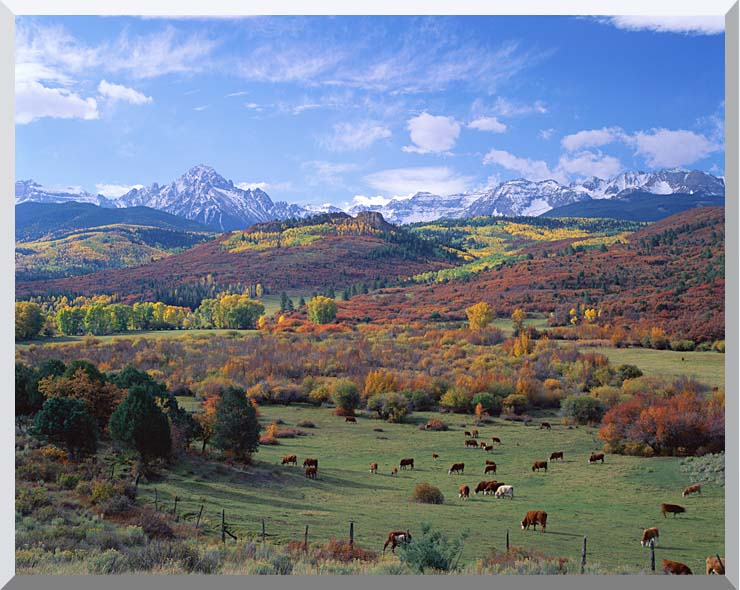 Visions of America Sneffels Mountain Range Colorado stretched canvas art print