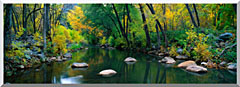 Visions of America Cottonwood Canyon In The Autumn stretched canvas art