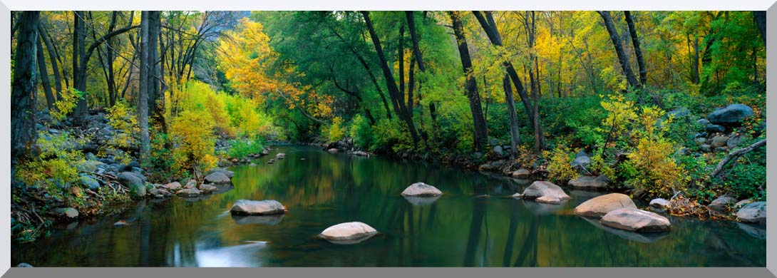 Visions of America Cottonwood Canyon in the Autumn stretched canvas art print