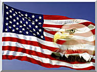Visions of America American Flag  And A Bald Eagle stretched canvas art